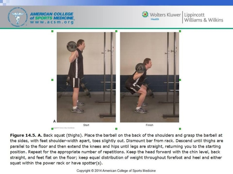 The ACSM Squat: http://muscleandbrawn.com/forum/general-fitness-health/17211-how-acsm-teaches-you-squat.html