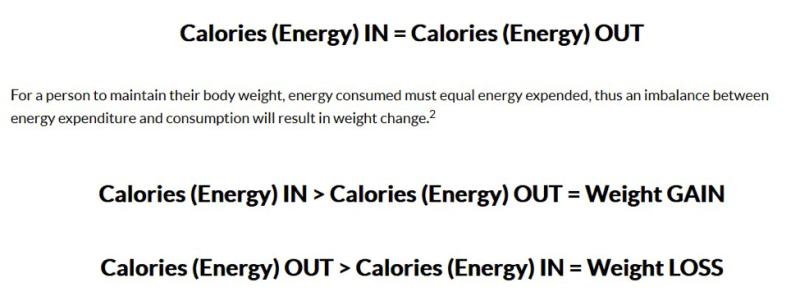 [https://gebn.org/energy-balance-basics]